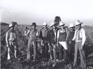 Smiling Braceros in a Field
